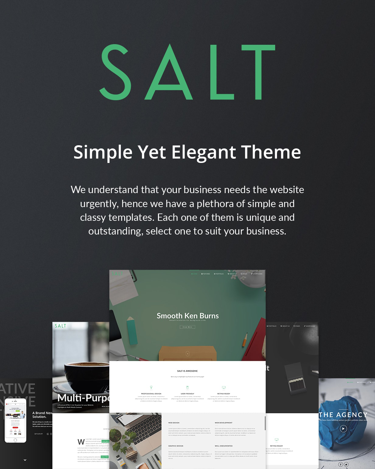 Salt | Responsive Multi-Purpose WordPress Theme - 6