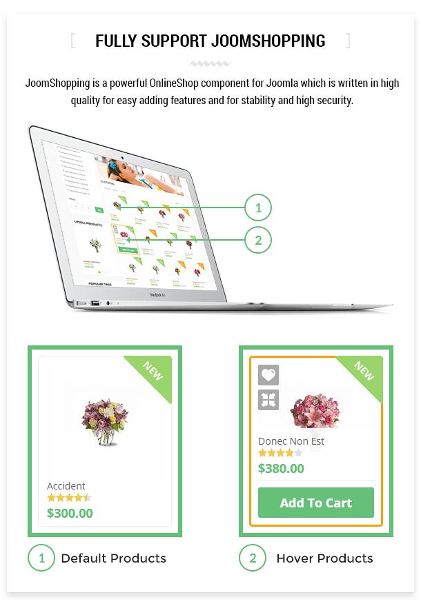 Orion :: Businesses & e-Commerce Joomla Template - 9