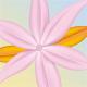 Pink Flower - GraphicRiver Item for Sale