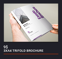 Trifold Brochure - 80