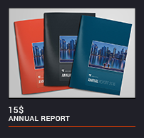 The Annual Report - 16