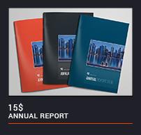 Annual Report - 20