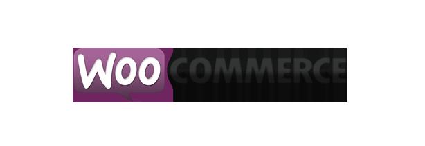Shopifiq - Responsive WordPress WooCommerce Theme - 2