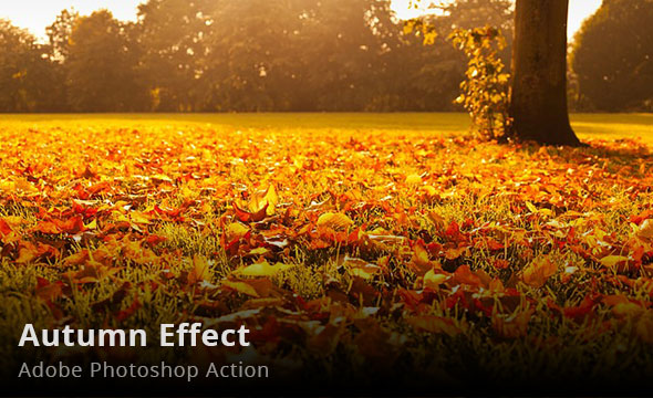 Autumn Effect Photoshop Action