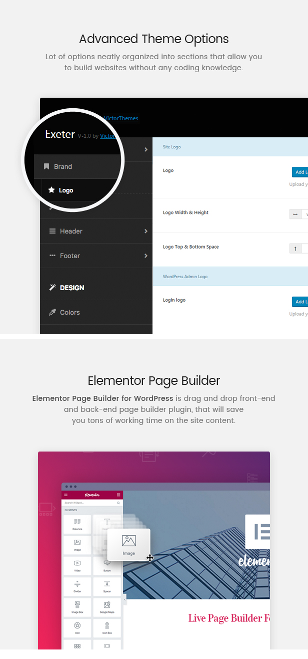Exeter Theme Options & Visual Composer
