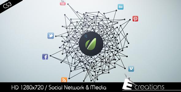Social_Network_-&_Media_590x300