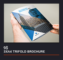 Trifold Brochure - 94