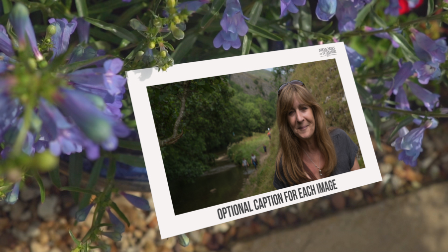 Photo Gallery in a Beautiful Garden - 4