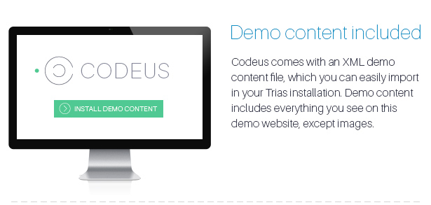 Codeus — Multi-Purpose Responsive WordPress Theme - 33