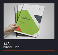 Trifold Brochure - 30