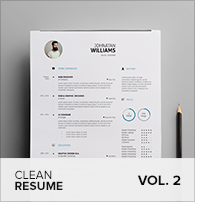 Clean Resume Vol. 5 - 13