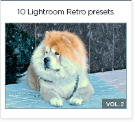 10 lightroom presets vol 2