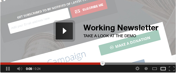 Political Candidate - Responsive Landing Page - 8