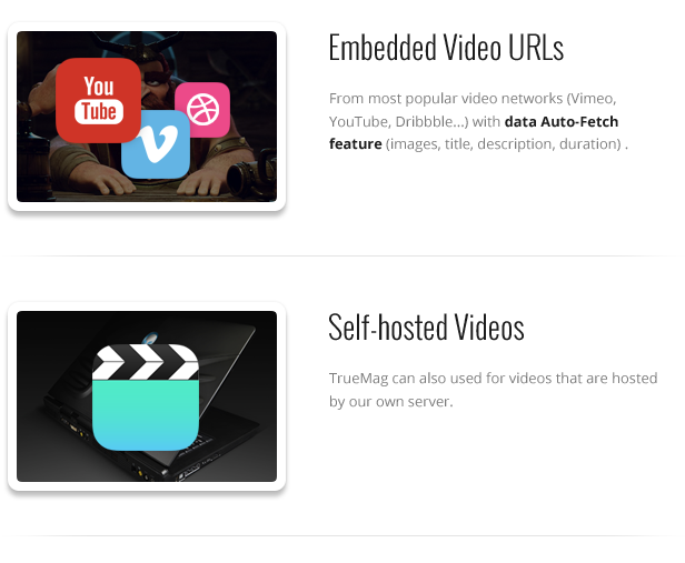 True Mag - WordPress Theme for Video and Magazine - 31