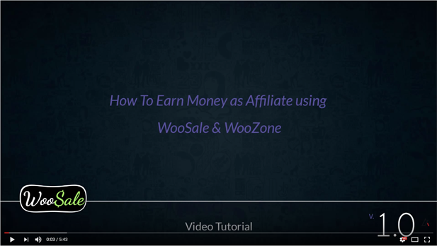 WooCommerce Amazon Affiliates - Wordpress Plugin - 27