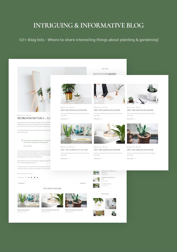 The Green - Houseplants & Gardening WordPress Theme