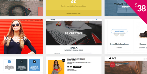 ACE - Responsive, Multi Purpose, Retina Ready WordPress Theme