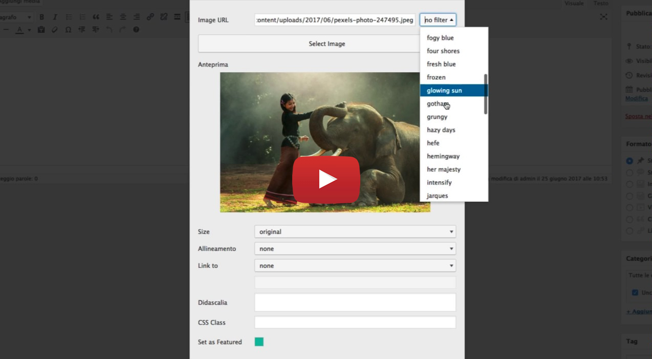 WP Filterize – Instant photo filters plugin for WordPress - 1