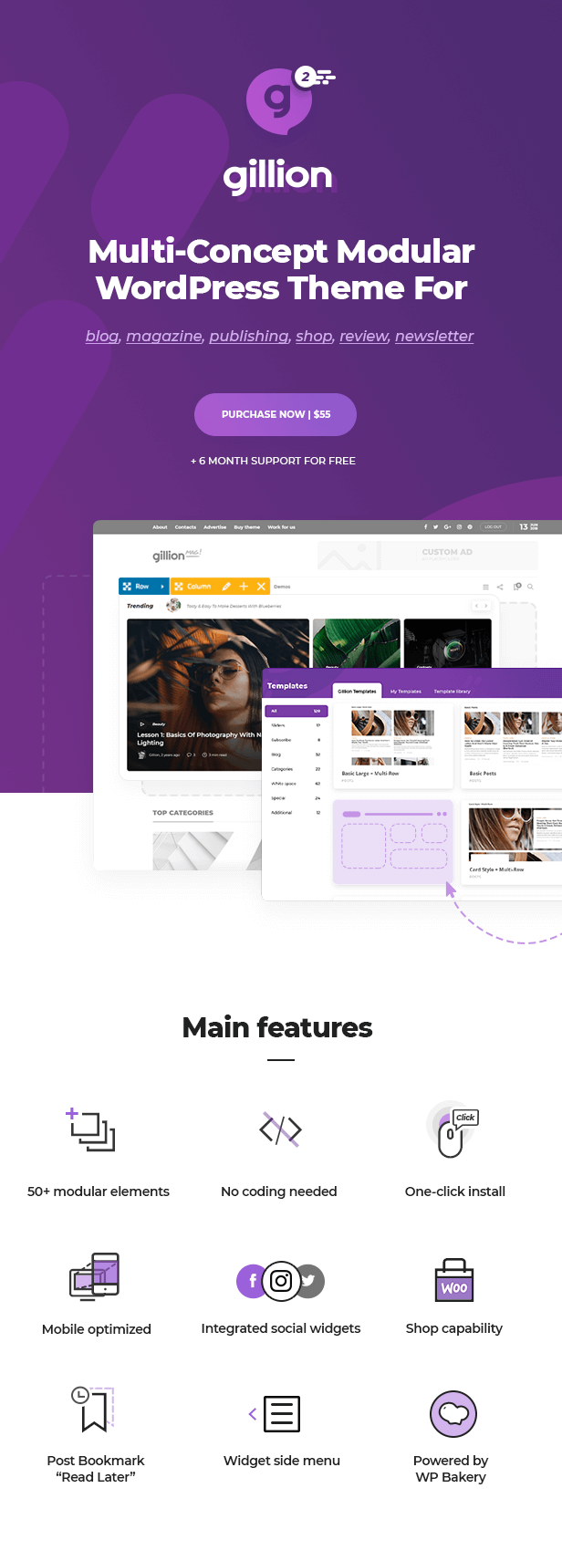 Gillion - Multi-Concept Blog/Magazine & Shop WordPress Theme