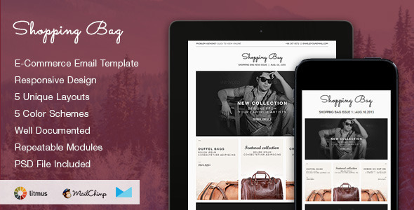 Shopping Bag E Commerce Psd Email Template By Smythemes Graphicriver