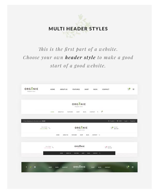 Organic Store WordPress theme - Multiple Header Styles