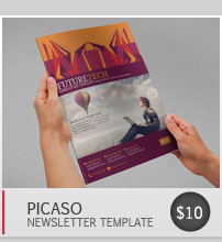 picas business newsletter by blogankids graphicriver