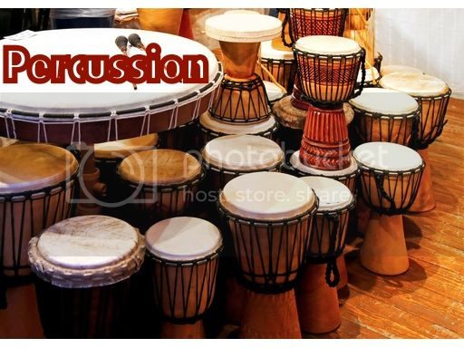 photo percussion2_zps74fb1b49.jpg