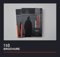 Trifold Brochure - 49