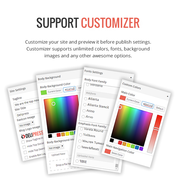 Customizer Support - DeliPress - Magazine and Review WordPress Theme