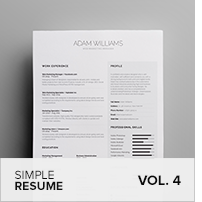 Clean Resume Vol. 5 - 24