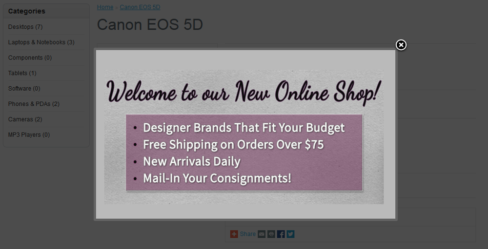 Custom Content Popup at Product Page for OpenCart - 6