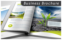8 Page Business Brochure - 1