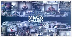 Mega Gallery