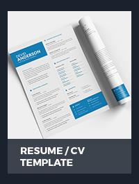 Resume Template - 22