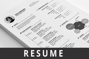 Simple Infographic Resume - 2