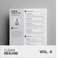 Clean Resume Vol. 5 - 15