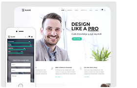 Blake | High-Grade MultiPurpose WordPress Theme - 1
