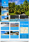 Travel Agency and Real Estate Business Flyer Template