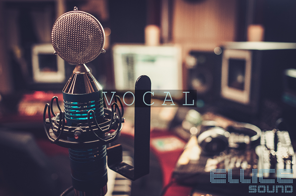 MICROPHONE-VOCAL