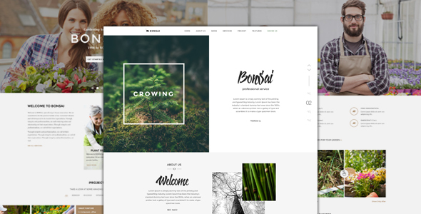 Bonsai - Responsive HTML Template for Landscapers & Gardeners