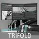 Multipurpose Trifold Template 08