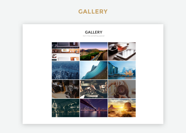 Profi WP Gallery