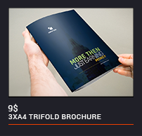 Trifold Brochure - 92