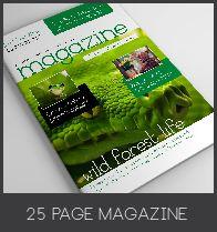 25 Pages Interior Magazine Vol4 - 17