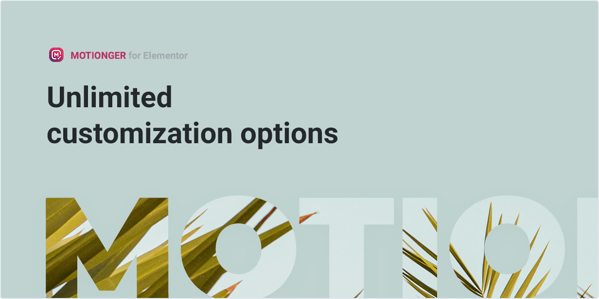 Motionger widget Unlimited customization options