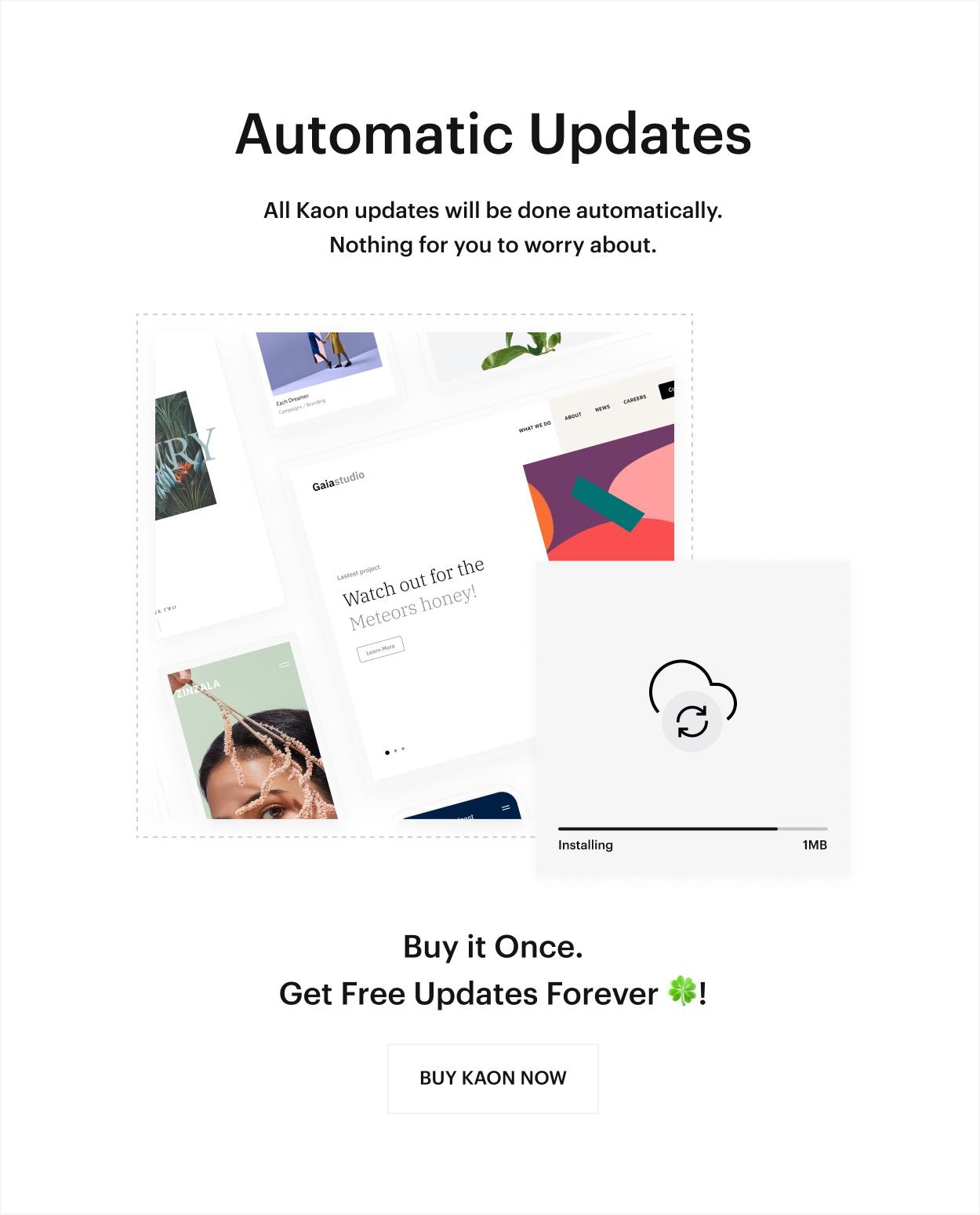 Kaon WordPress Theme - Automatic Updates