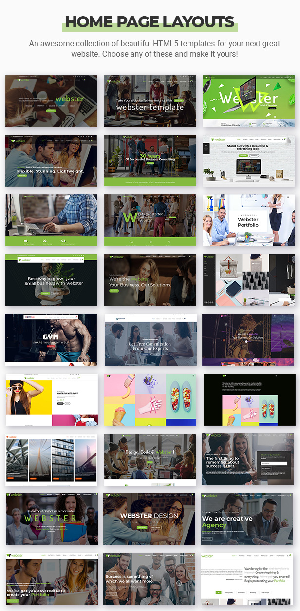 Webster - Responsive Multi-purpose HTML5 Template - 7