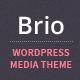 Brio - Media & E-Commerce WordPress Theme - ThemeForest Item for Sale