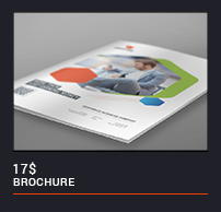 Trifold Brochure - 36