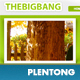 BigBang - Creative Company Template